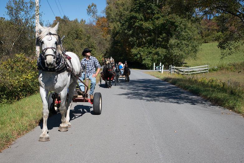 Washington County Draft Horse Drive