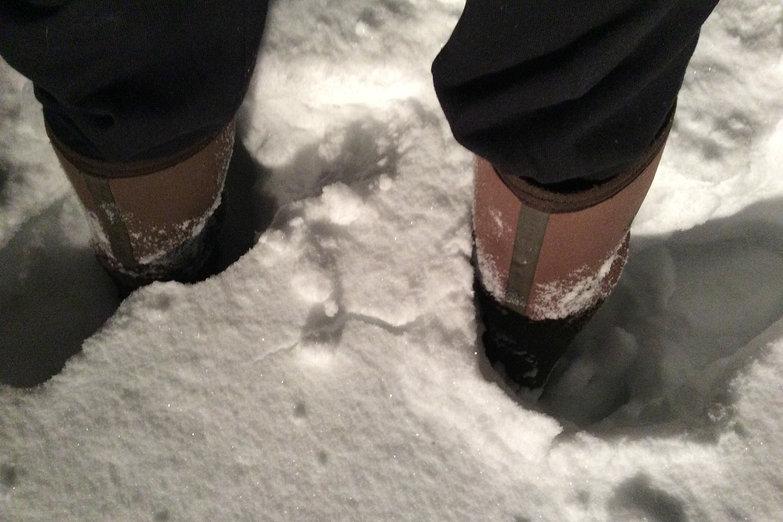 Tara's Boots in Snow