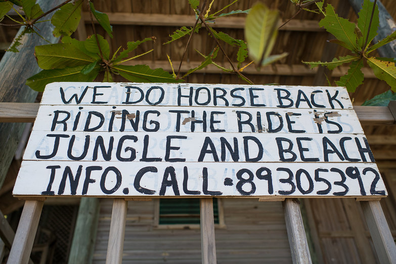 Horse Back Riding Sign in Roatan