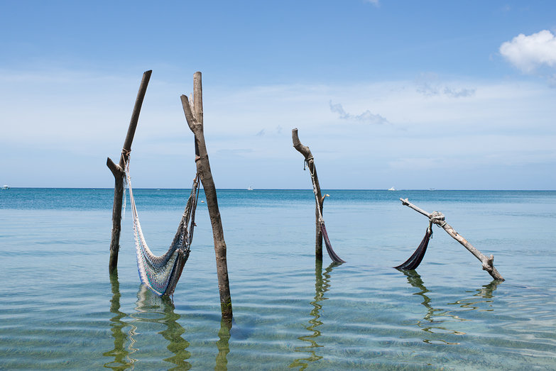 Driftwood Hammocks on Beach