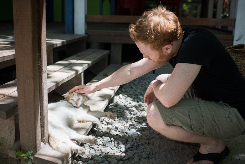Tyler Petting Roatan Cat