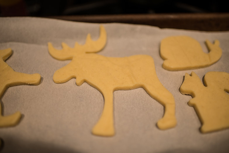 Moose Sugar Cookie Dough