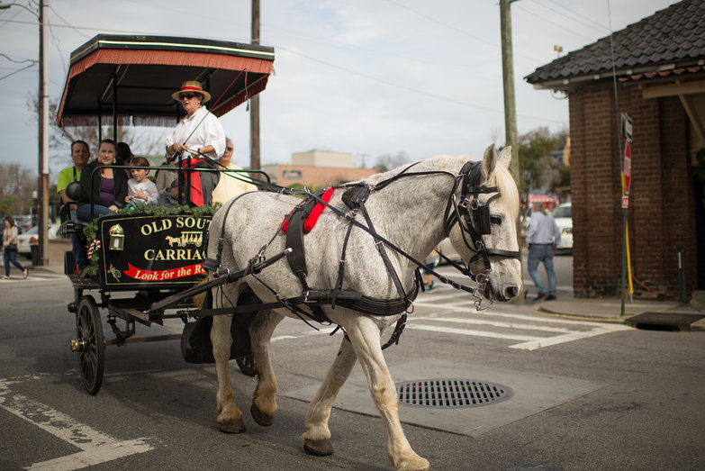 Old South Carriage Ride