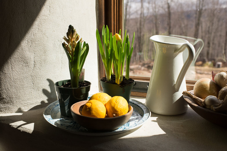 Early Spring Kitchen Sill (Flowers & Lemons)