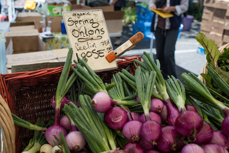 Spring Onions at Temescal Farmer's Market