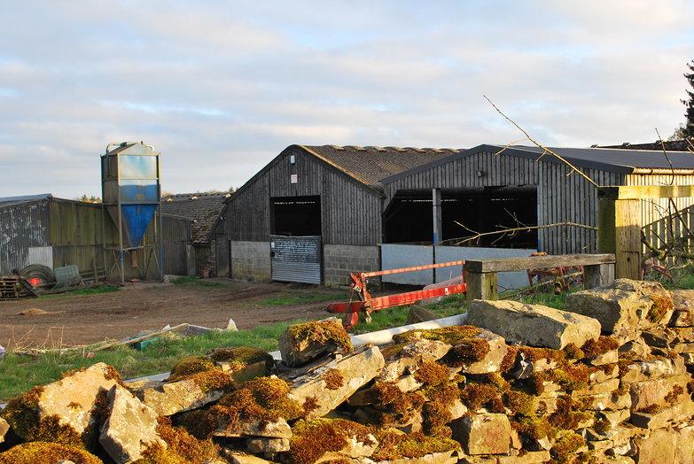 Campsite Farm