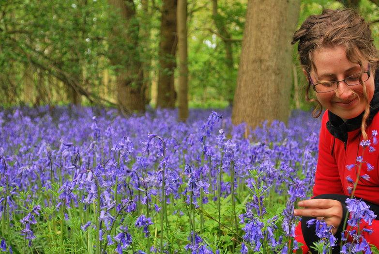 Tara + Blue Bell Forest
