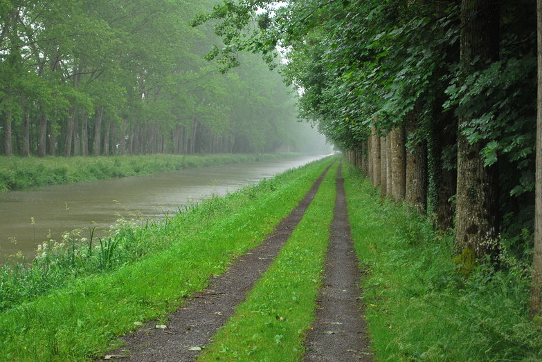 Rainy Canal Route