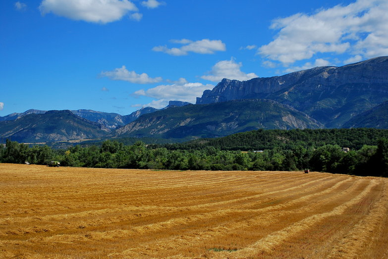 Mountains & Fields