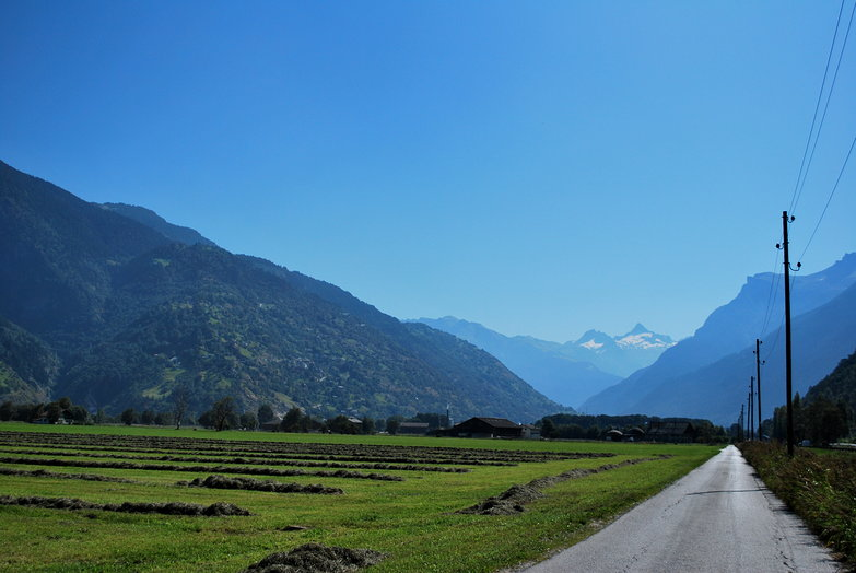 Road through Swiss Alps Landscape