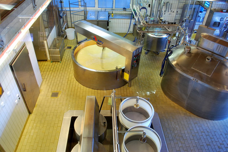 Emmental Cheese Factory