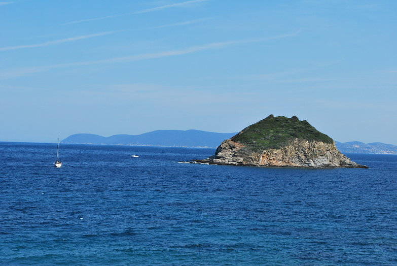 View From Elba Island