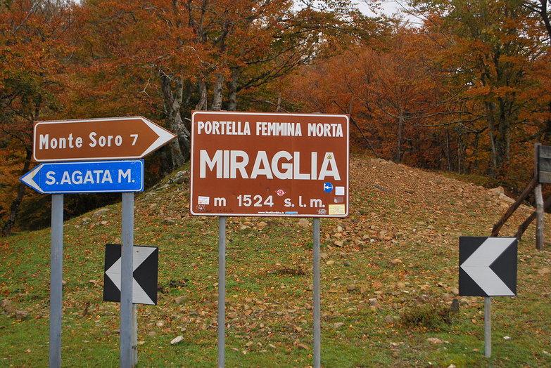 Miraglia
