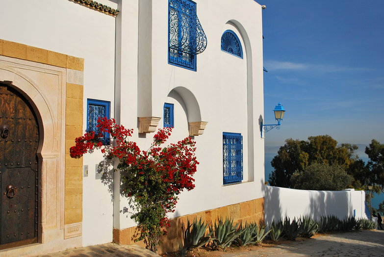 Sidi Bou Said Home