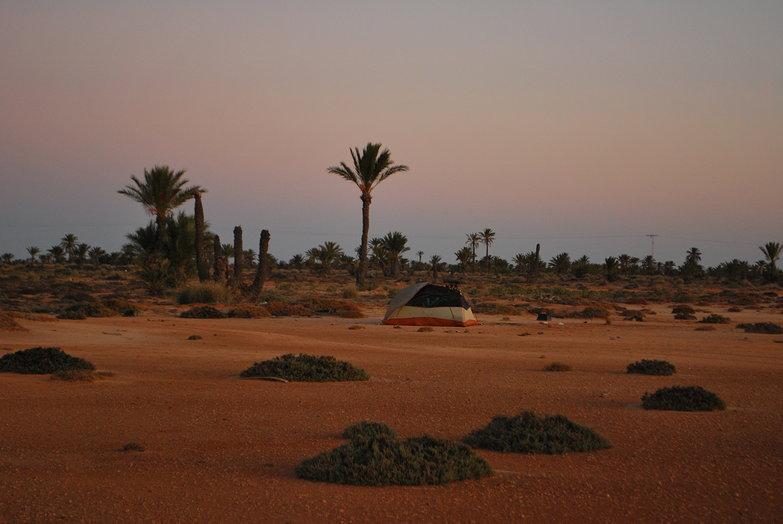 Desert Camp Oasis