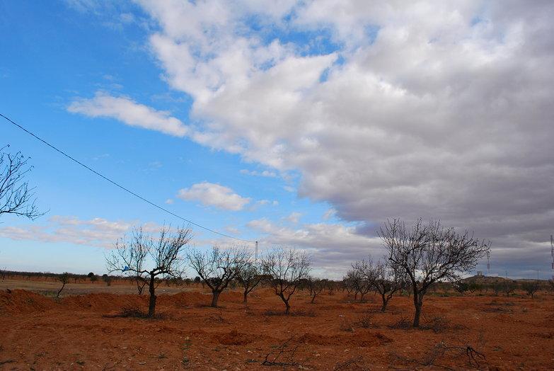 Tunisian Sky