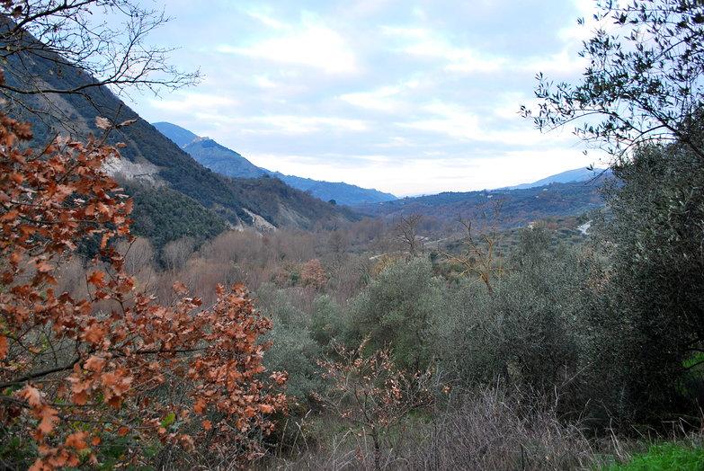 Potenza Mountain Vista