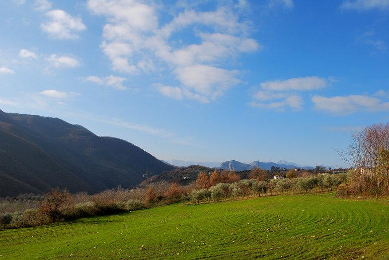 Green Mountain Field