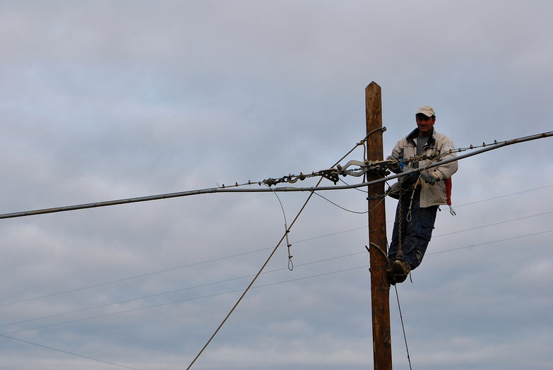 Italian Pole Climber