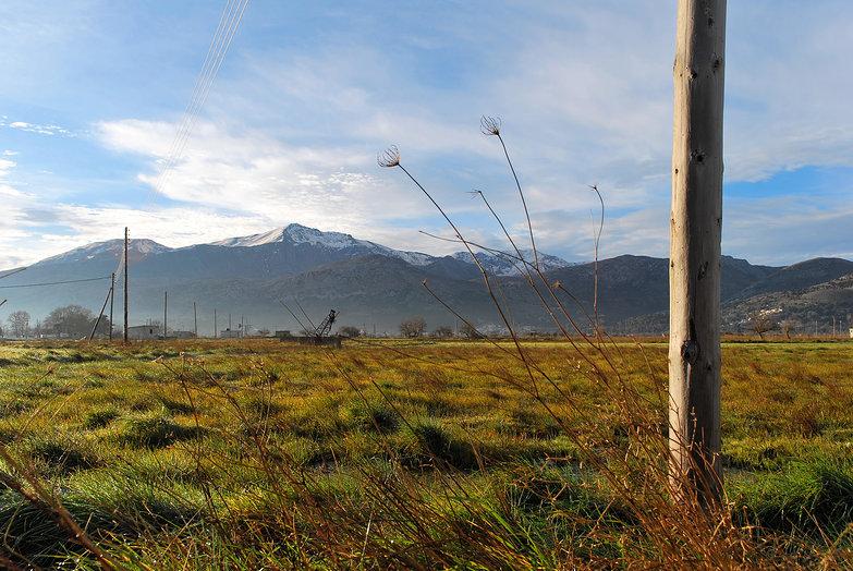 Lasithi Plateau Morning