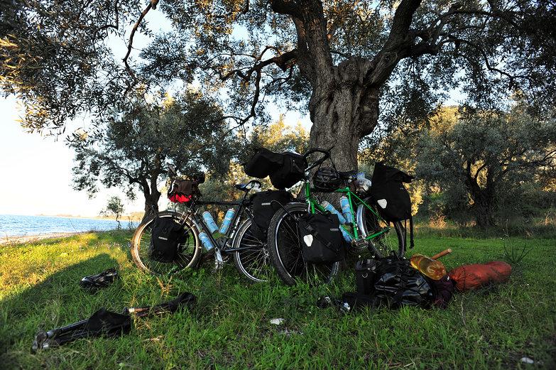 Bikes @ Beachside Grove