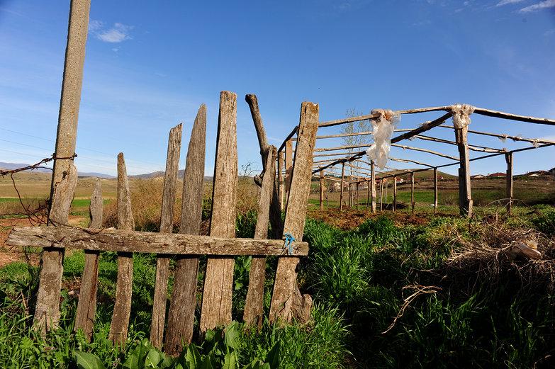 Macedonian Greenhouse Frame