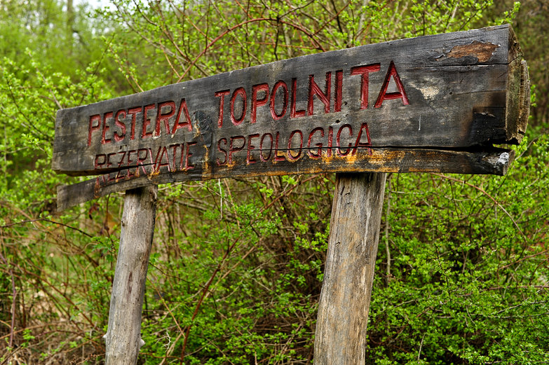 Pestera Topolnita: Rezervatie Speologica