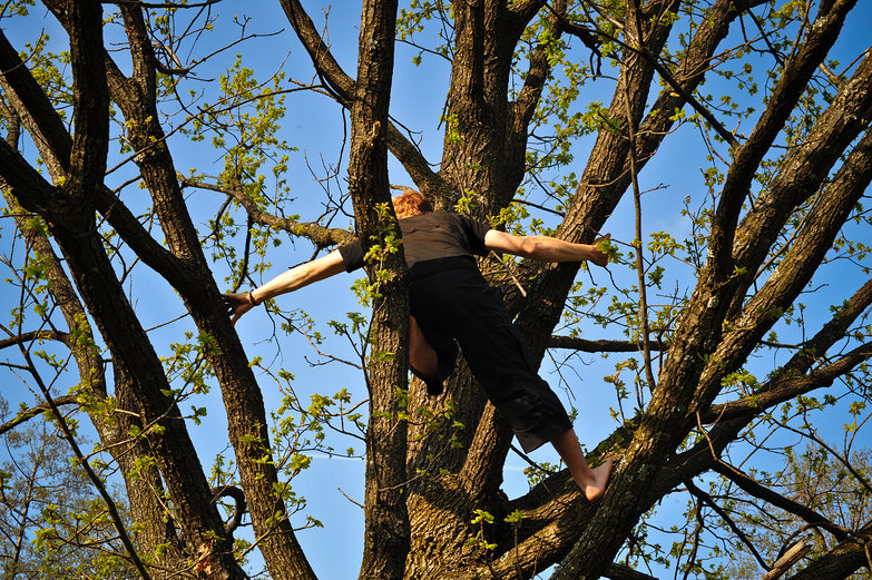 Tyler Climbing a Tree