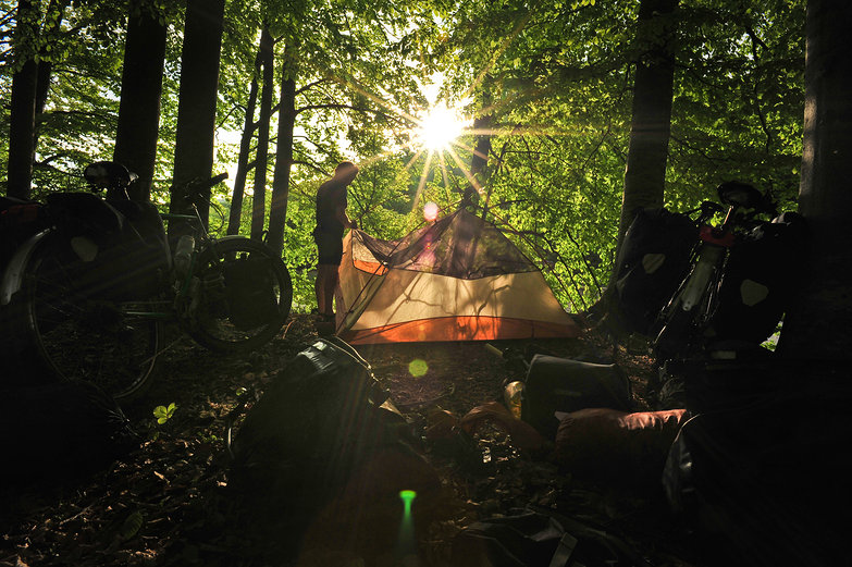 Sunflare Free Camp