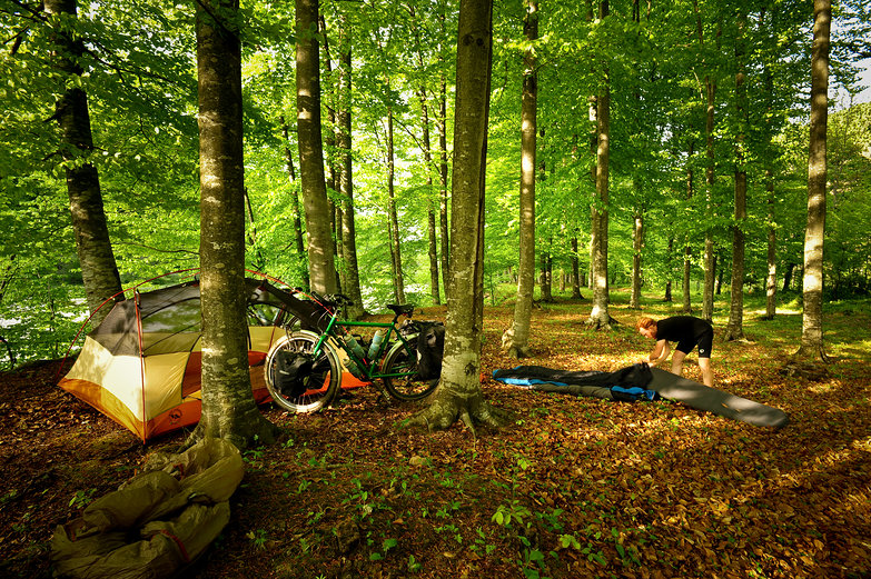 Romanian Forest Free Camp