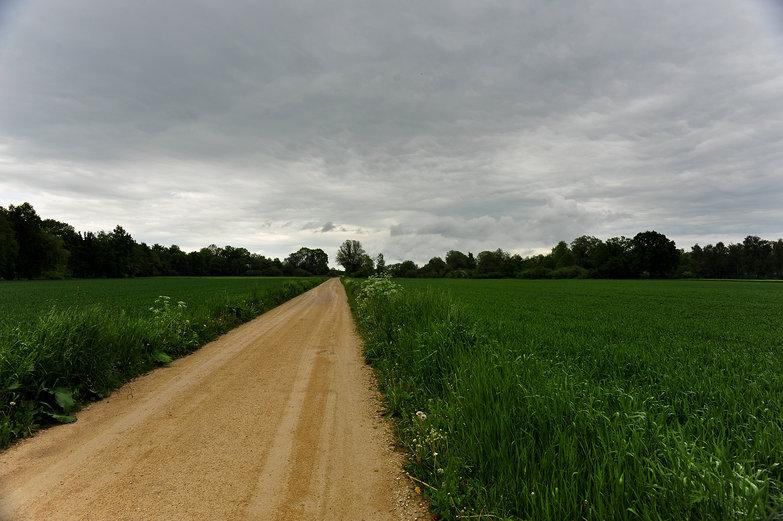 German Bicycle Path