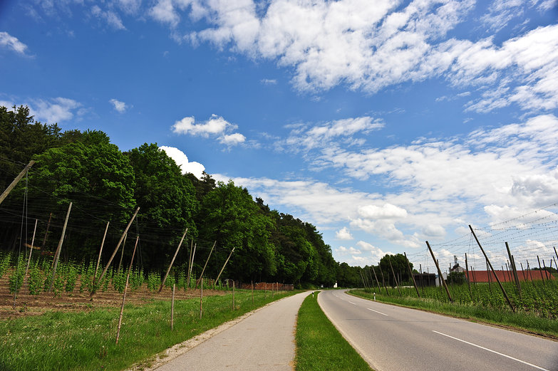 Germany: Hops & Bike Paths