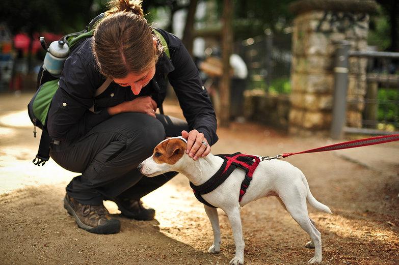 Tara & Doggie