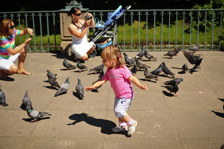 Girl & Pigeons