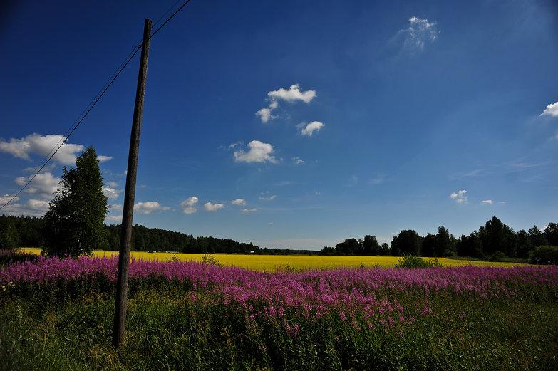 Finland Fields