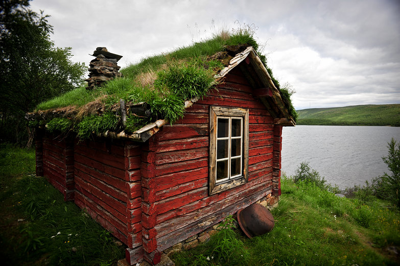 Traditional Green Roof