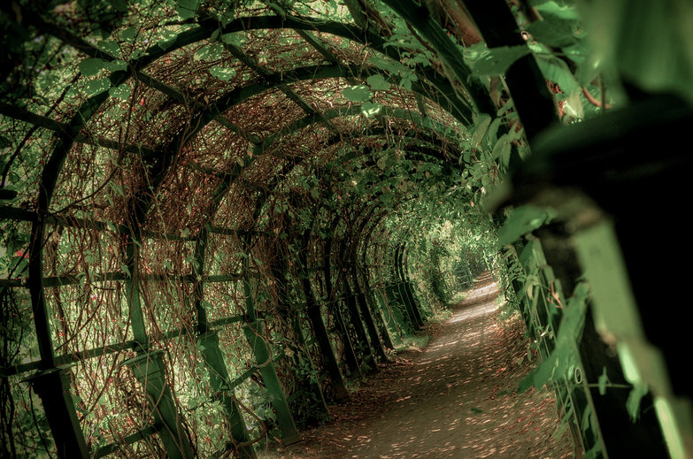 Peterhof Palace Arbor (HDR)