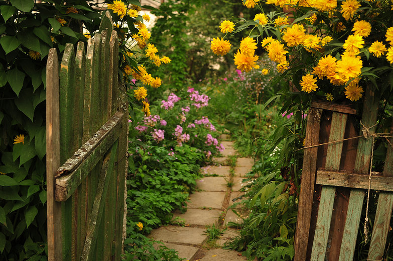 Flowers and Fence Gate