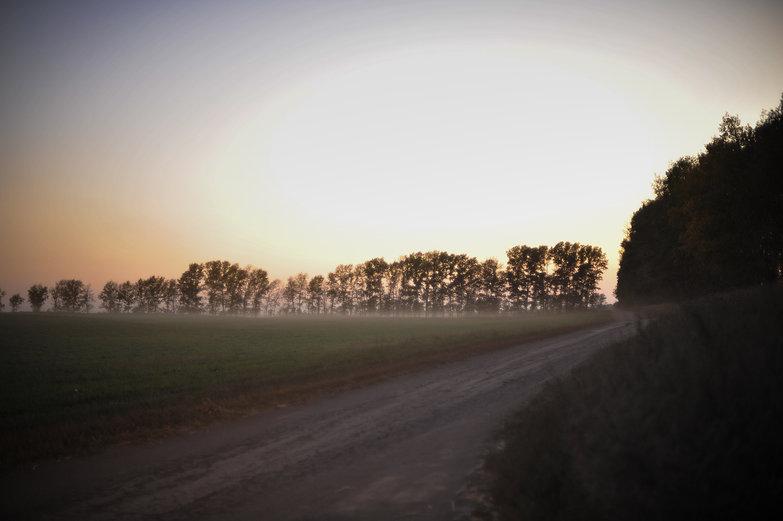 Siberian Fields
