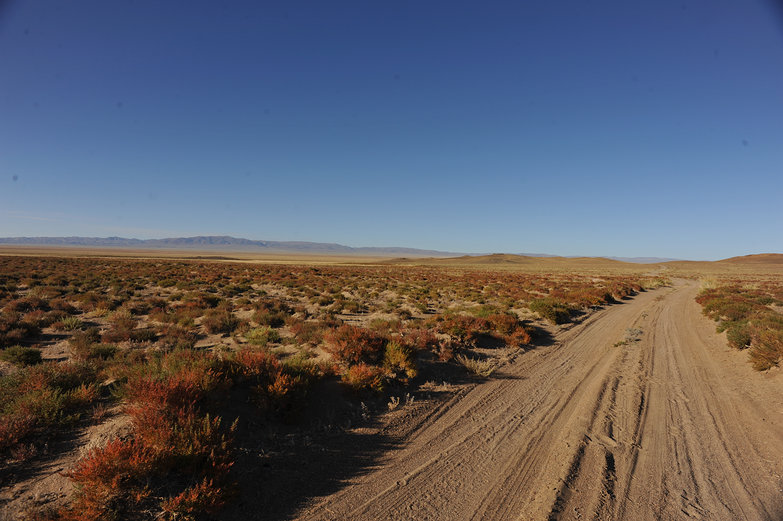 Mongolian Road