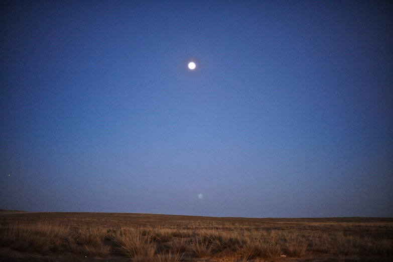 Mongolian Moon