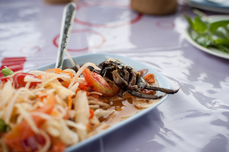 Spicy Green Papaya Crab Salad
