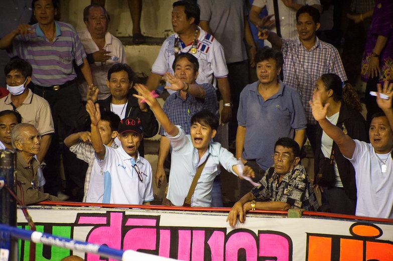 Muay Thai Boxing Gamblers