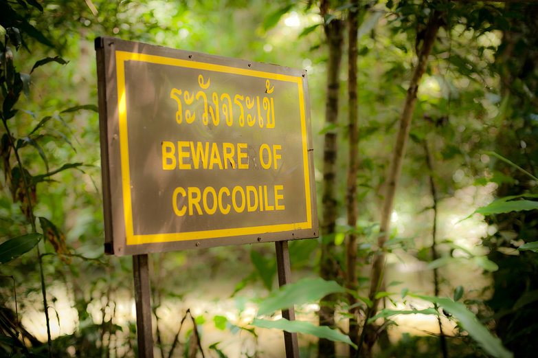 Beware of Crocodile