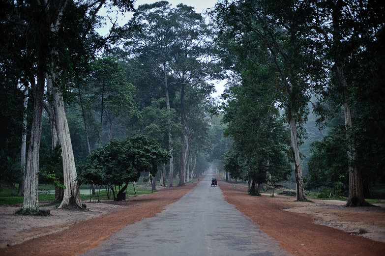 Road to the Bayon