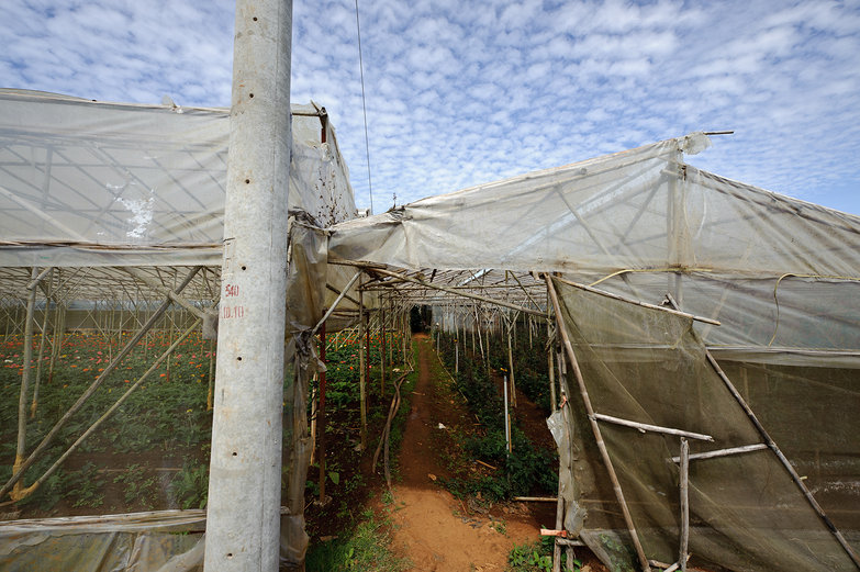 Greenhouse Near Da Lat, Vietnam