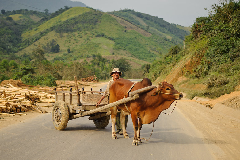 Vietnamese Man on Wooden Pullcart