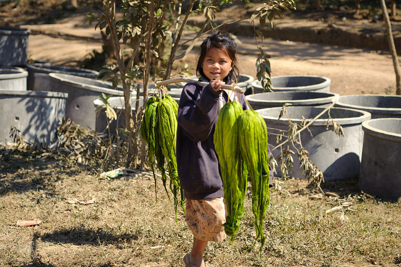 Lao Girl & River Weeds
