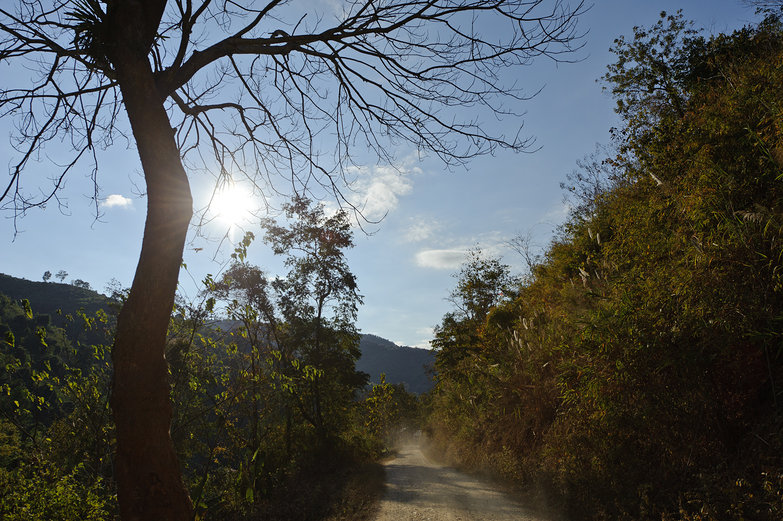 Lao Dirt Road View