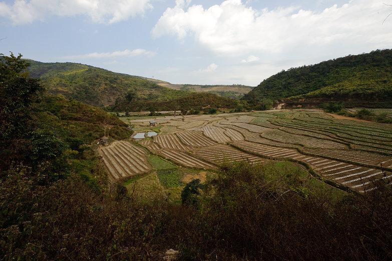 Lao Field